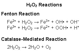 Reactions