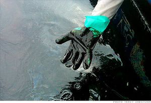 Bp_oil_spill_glove.top