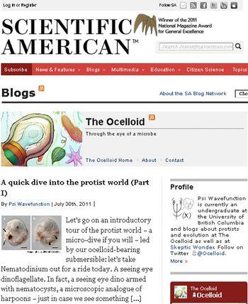 Ocelloid