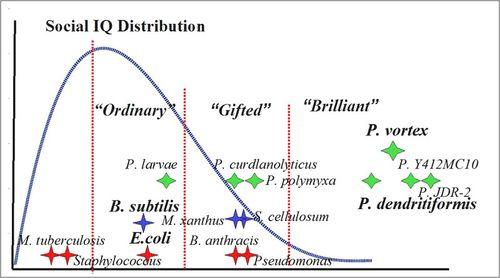 800px-Social-IQ_distribution