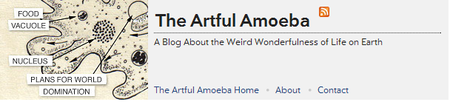 The_artful_amoeba
