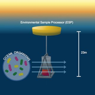 Environmental Sample Processor