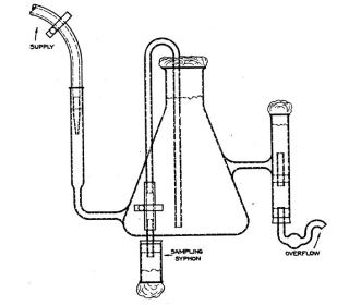 fig.1-broth