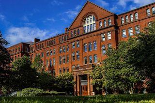 Harvard Museum