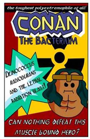 Fig.2.Conan the Bacterium