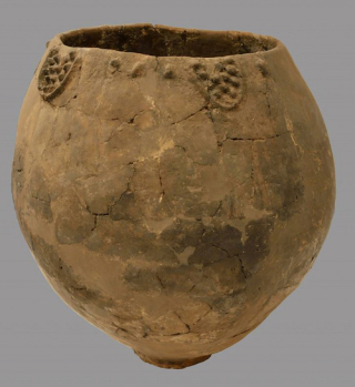 Fig.3.WineJar