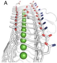 Fig 2  3D strucutre
