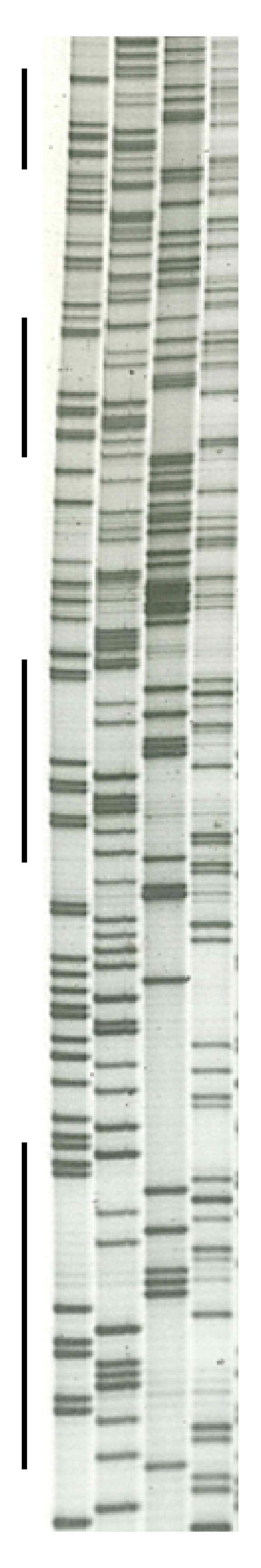 Figure2Mojica