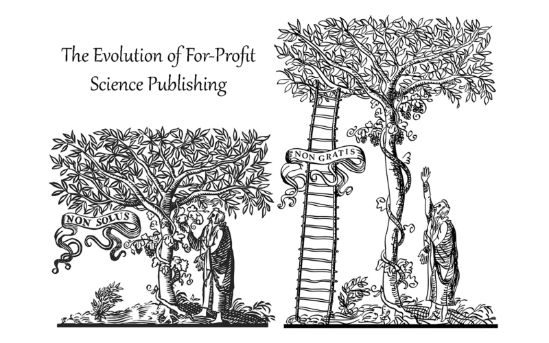 Fig.1.Publishing