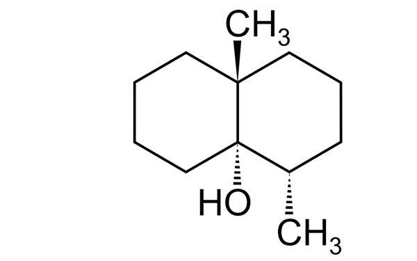 Fig.2.Geosmin