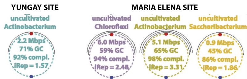 Fig.4.Reconstructed_Genomes