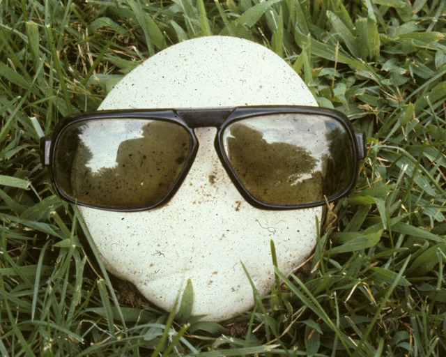 Calvatia Sunglasses